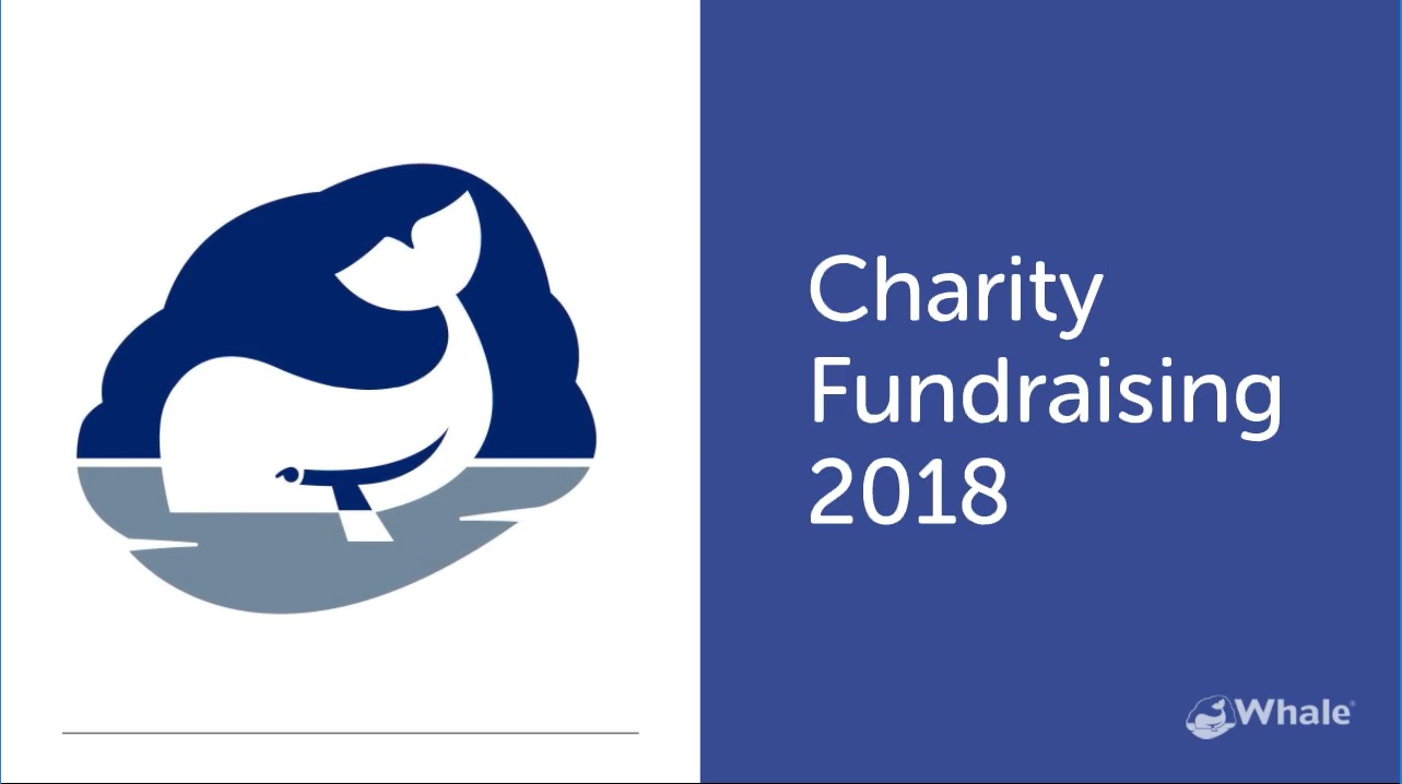 Charity Fundraising Total 2018 Revealed